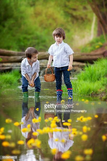 Two adorable boys on a pond, throwing dandelions