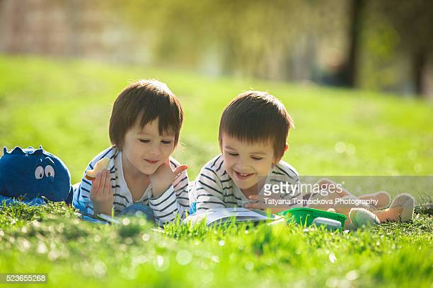Two adorable cute boys, lying in the park in a fine sunny afternoon, reading a book and eating fruits and cookies