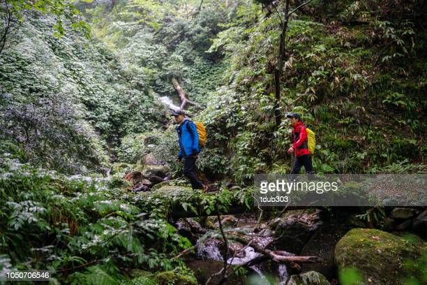雨の中でハイキングしながら自然を楽しむ 2 つの成人男性 - 鳥取県 ストックフォトと画像