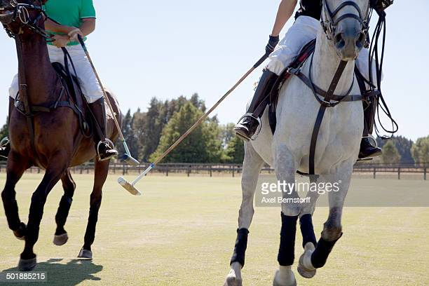 two adult men playing polo - polo stock pictures, royalty-free photos & images