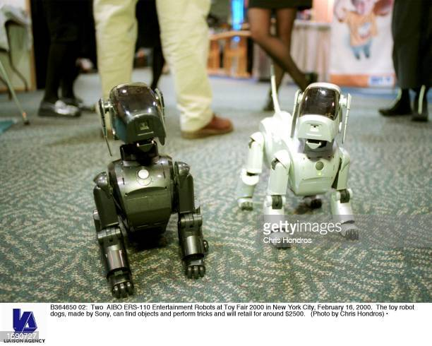 Two AIBO ERS110 Entertainment Robots at Toy Fair 2000 in New York City February 16 2000 The toy robot dogs made by Sony can find objects and perform...