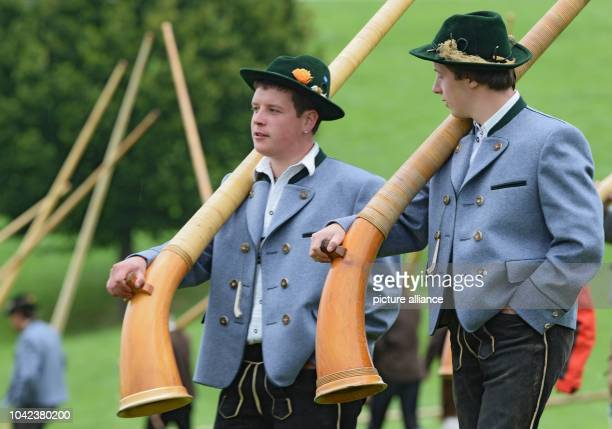 Two Alphorn blowers walk down a hill with their instruments after their performance at the Alphorn blowers meeting in WeilerSimmerberg Germany 25...