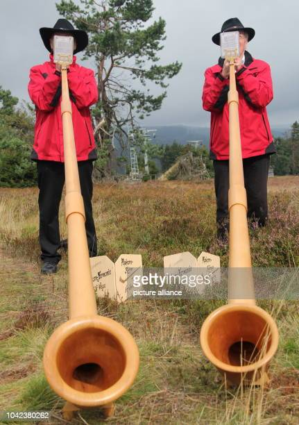 Two alphorn players play on their instruments on the Ettelberg mountain in Willingen Germany 31 August 2014 Thousands of visitors attended the...