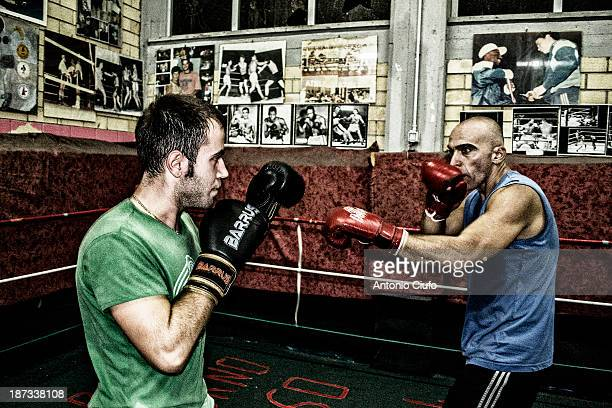 Two amateur boxers training in the Athletic Boxe Club Minturno. The Italian boxing knows more success thanks to the victories at the World...