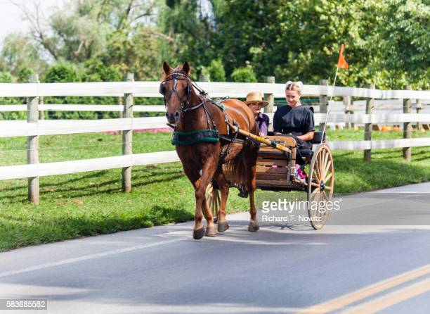Two Amish Children ride in open Carriage