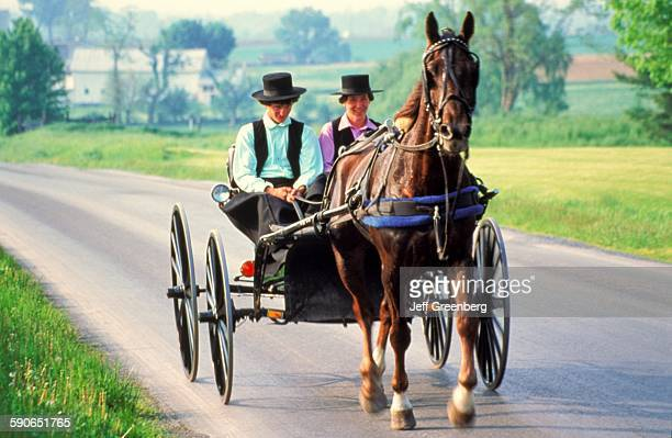 Two Amish Or Mennonite Men Riding In Buggy