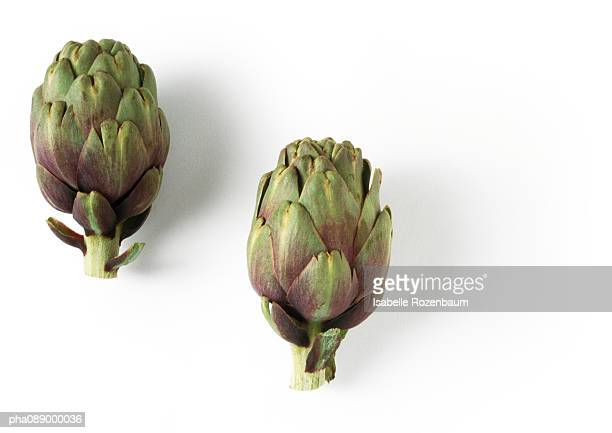 Two artichokes, side view