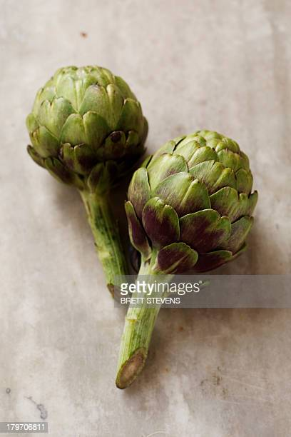 Two artichokes, still life