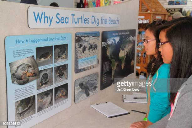 Two Asian girls reading an exhibit at The Turtle Hospital