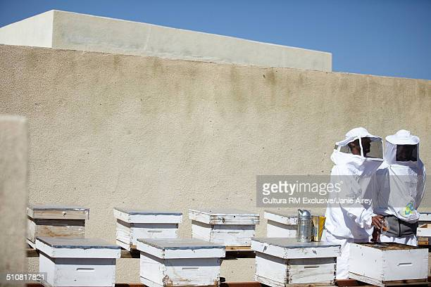 Two beekeepers checking hives, Omani Ministry of Agriculture bee breeding centre, Savq, Jabal Akhdar, Oman, Middle East