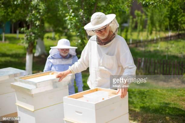 2 つのハニカム 養蜂家 チェックのビーハイブ - 養蜂 ストックフォトと画像