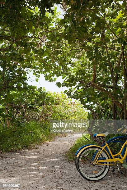 two bicycles parked on woodland beach path, anna maria island, florida, usa - anna maria island stock pictures, royalty-free photos & images