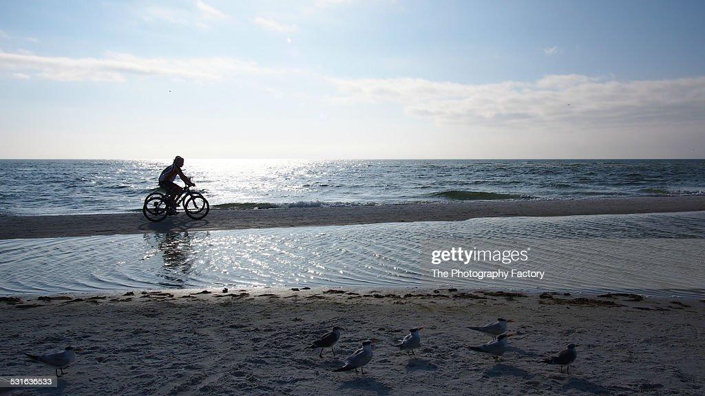 Two Bicyclists on Siesta Key Beach, Florida : Stock Photo