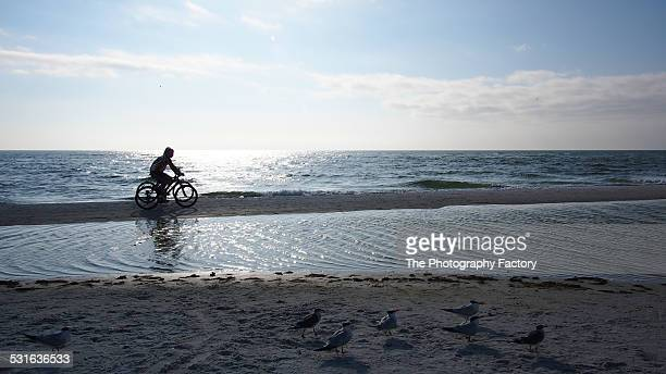 two bicyclists on siesta key beach, florida - siesta key stock pictures, royalty-free photos & images