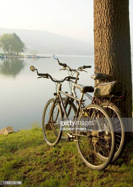 Two bikes leaning up against tree by lake on grounds of Lake Point Inn, Deep Creek Lake, Maryland, USA.