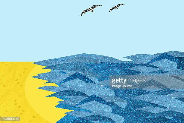 Two birds flying over sea and waves