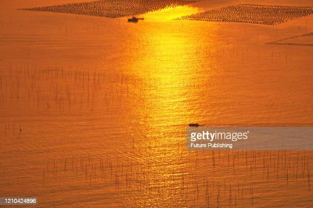 Two boats with sunrise on the sea. Xiapu County, Fujian Province, China, April 17, 2020.- PHOTOGRAPH BY Costfoto / Barcroft Studios / Future...