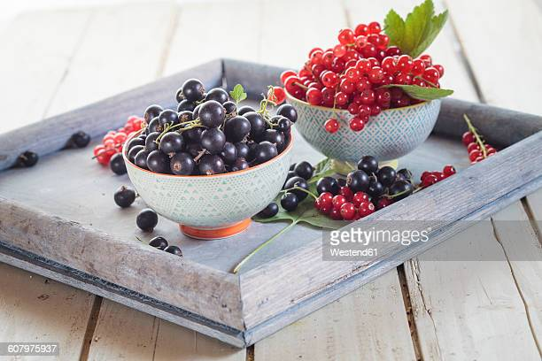 Two bowls of red and black currants on a tray
