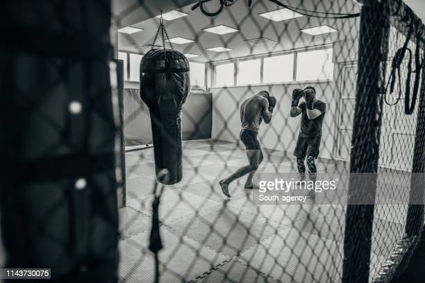 two boxer boxing - boxing ring stock pictures, royalty-free photos & images