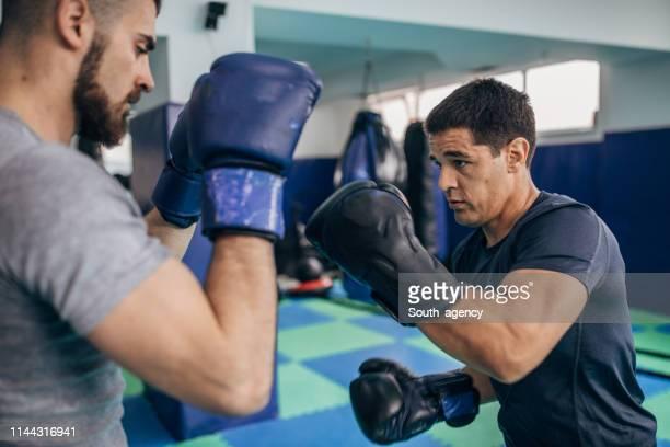 två boxare på kaliumsparande utbildning i gym - boxing bildbanksfoton och bilder