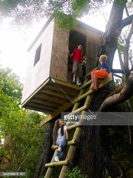 Two boys and girl (11-13) playing in tree house, low angle view