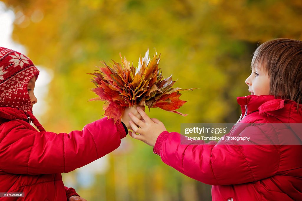 Two boys, brothers, holding leaves bouquet in autumn alley in the park, gathering leaves, playing happily. Children happiness concept : Stock Photo