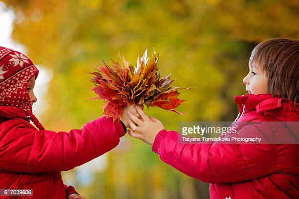 Two boys, brothers, holding leaves bouquet in autumn alley in the park, gathering leaves, playing happily. Children happiness concept