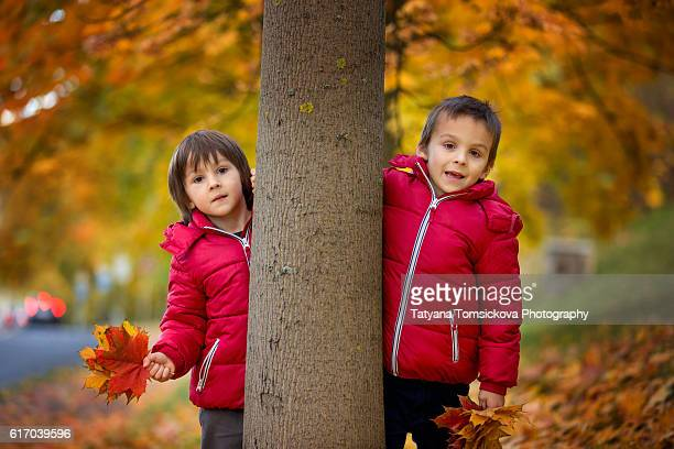Two boys, brothers, walking in autumn alley in the park, gathering leaves, playing happily. Children happiness concept