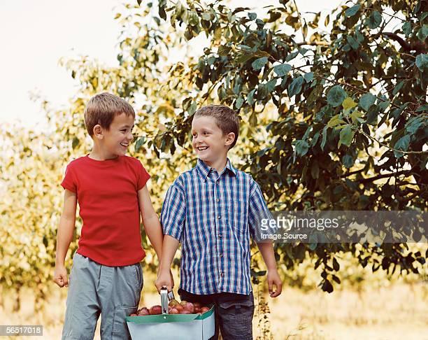 Zwei Jungen tragen ein Obstkorb