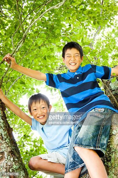 Two Boys Climbing Tree