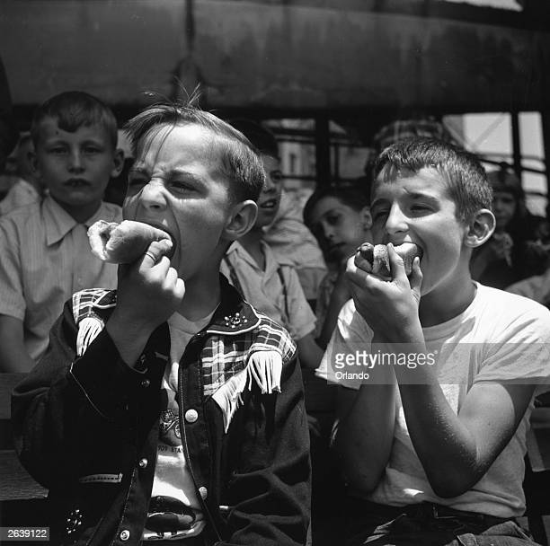 Two boys eating hotdogs during a baseball match