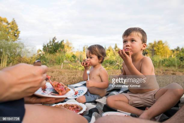 Two boys feasting on homemade pie during family picnic, Langley, British Columbia, Canada
