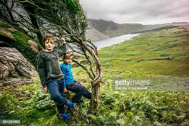 two boys fell climbing - only boys stock photos and pictures