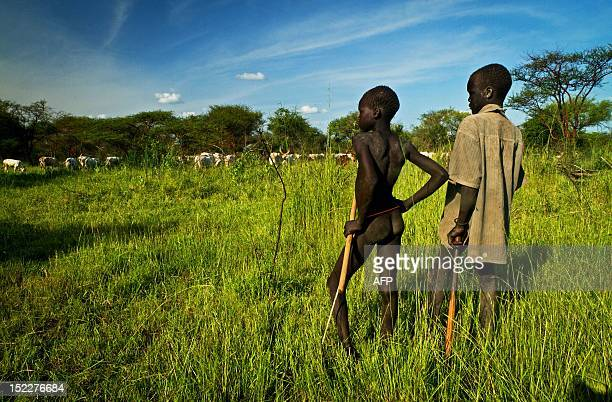 Two boys from the Mundari tribe watch over their cattle in Terekeka a fishing community 75km north of Juba in South Sudan on September 17 2012 The...