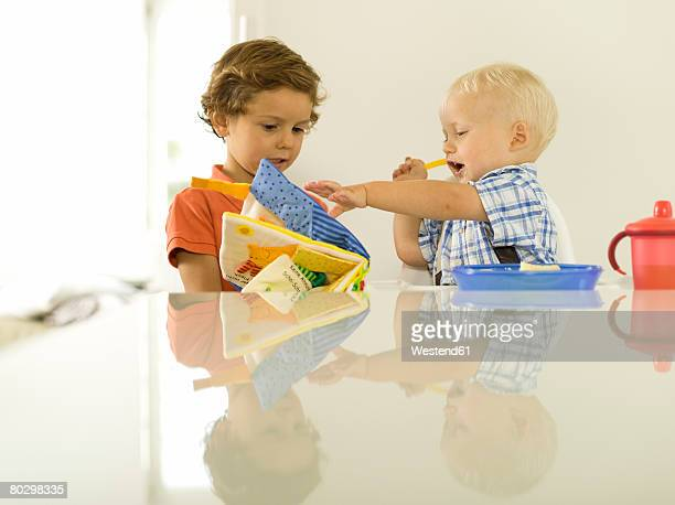 Two boys (4-5), (12-24 months), looking at picture book