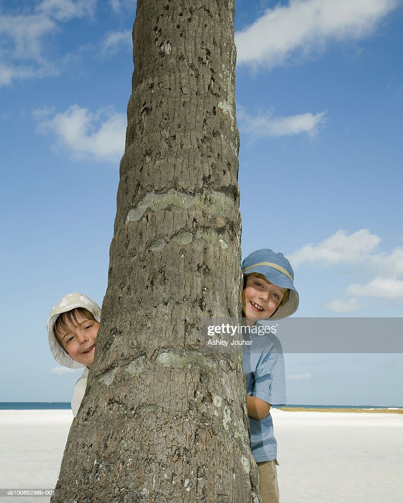 Two boys (4-7) on beach hiding behind palm tree, portrait : Foto stock