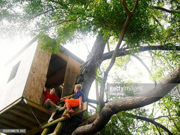 Two boys (11-13) playing in tree house, low angle view