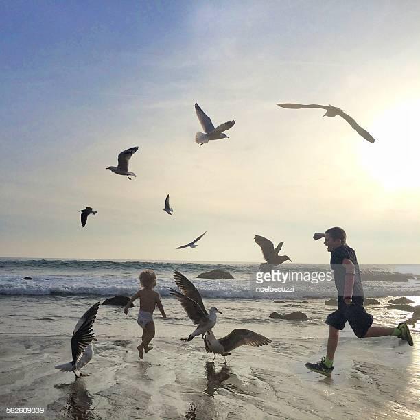 Two boys running on beach amongst seagulls