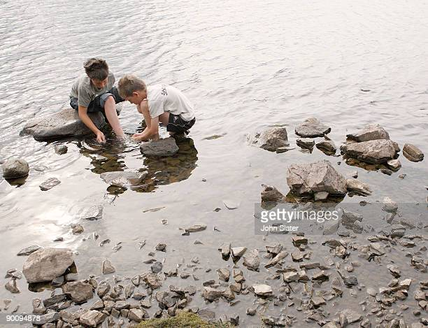 two boys searching for things at the water's edge - only boys stock photos and pictures