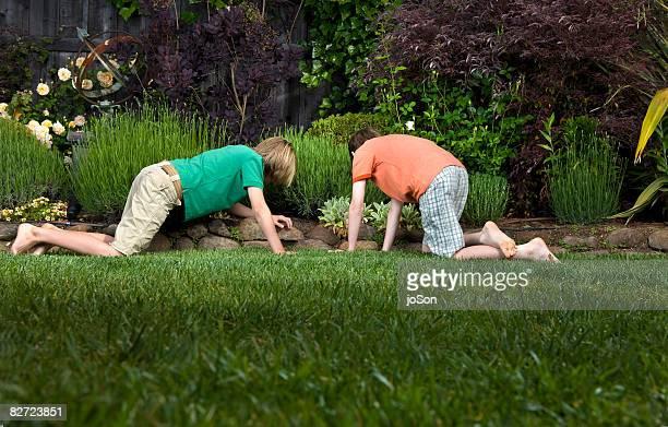 Two boys searching in yard