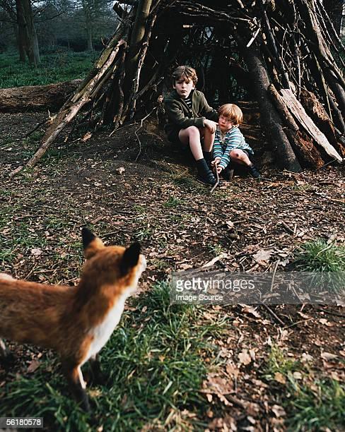 Zwei Jungen erschreckter von fox