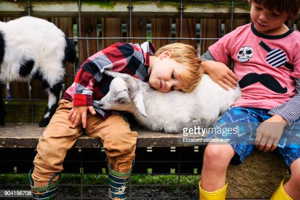 Two boys stroking baby goats