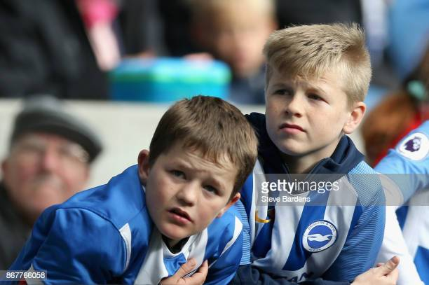 Two Brighton and Hove Albion fans look on prior to the Premier League match between Brighton and Hove Albion and Southampton at Amex Stadium on...