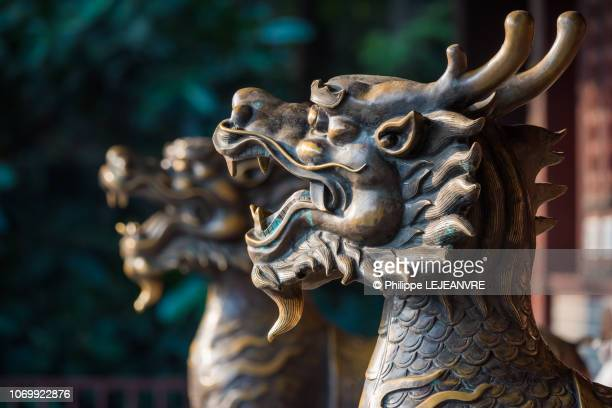 two bronze dragon statues in a taoist monastery in chengdu - dragon stock pictures, royalty-free photos & images