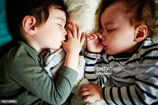 Two brothers sleeping, sucking thumbs