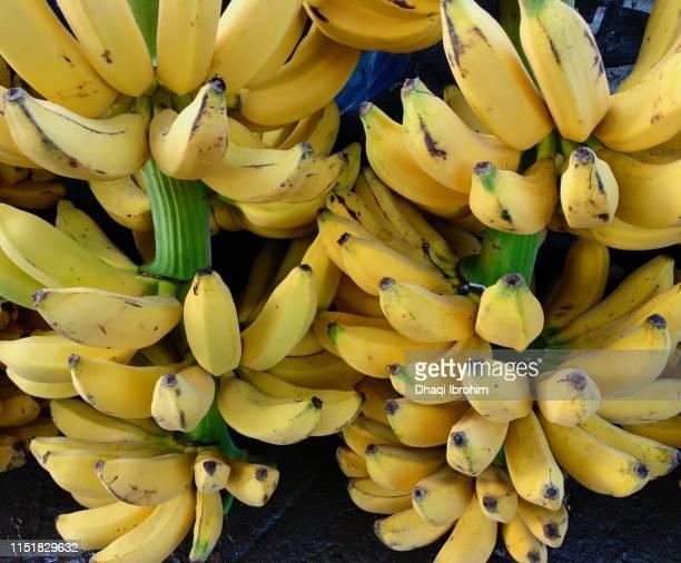 Two Bunch Of Bananas