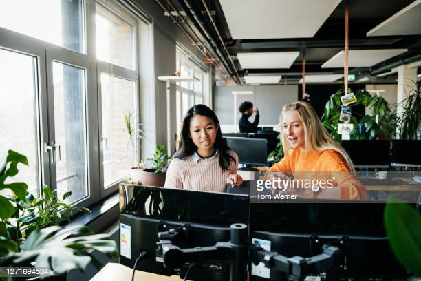 two business associates working at computer together - business stock pictures, royalty-free photos & images