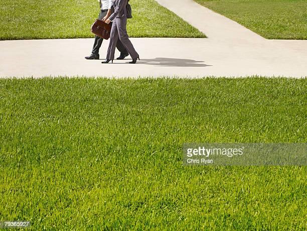 dos empresarios caminando al aire libre - hierba familia de la hierba fotografías e imágenes de stock