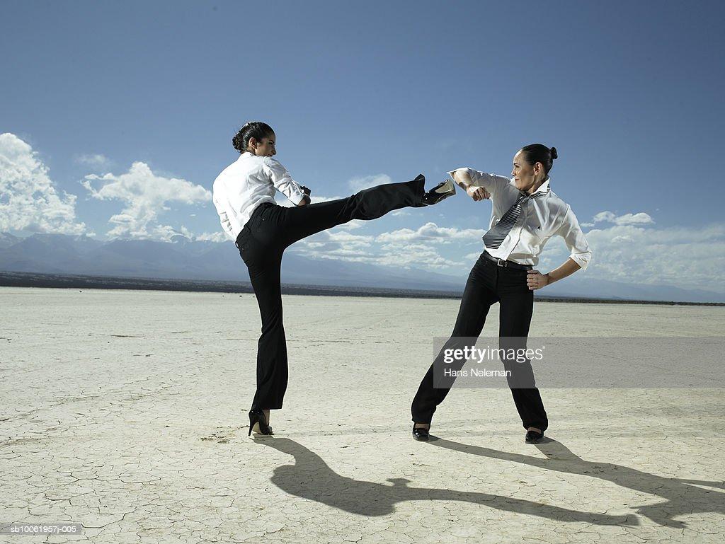 Two businesswoman fighting in desert landscape : Stock Photo