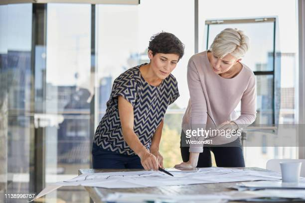 two businesswomen discussing floor plan on desk in office - german short haired pointer stock pictures, royalty-free photos & images